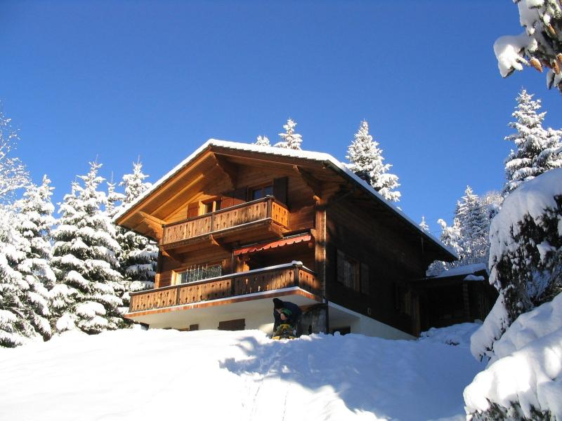 Great chalet for 10 persons, vacation rental in Bex