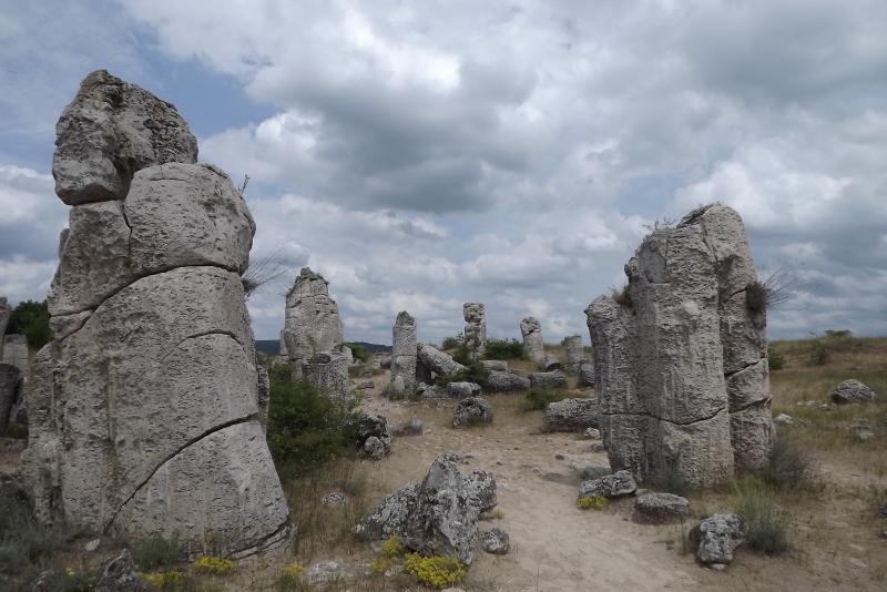 Stone Forest Near Varna