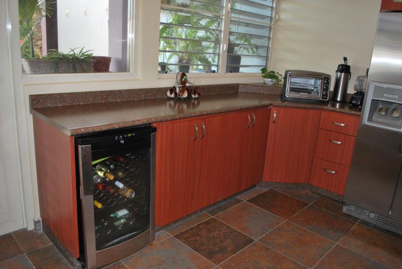 Refridge with icemaker, winecooler, toaster oven,coffee maker,blender