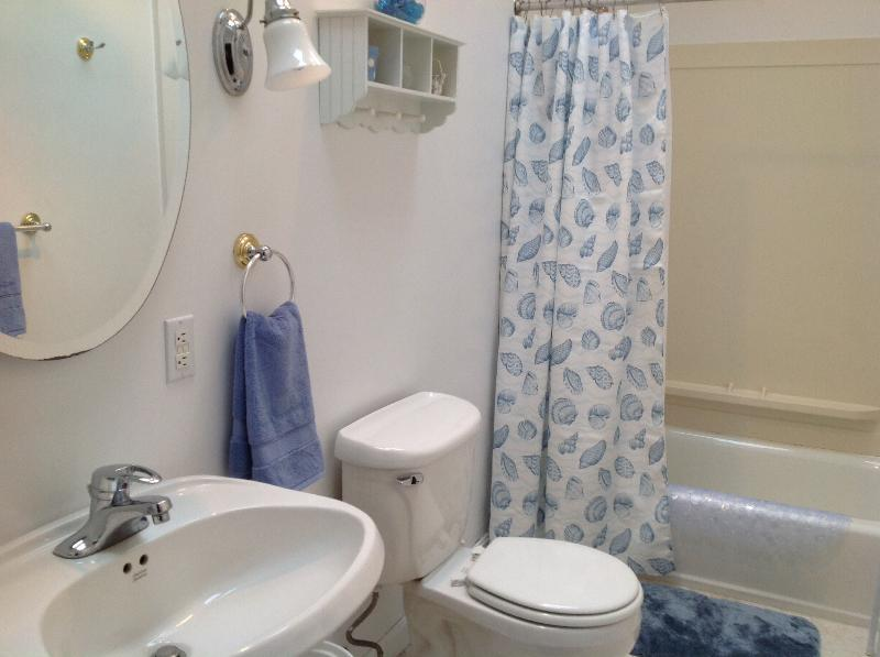 Bathroom with Tub, Shower and Ceiling Fan