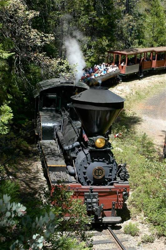 Ride the Sugar Pine Railroad (summer only)
