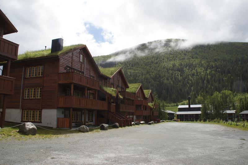 Tinden Apartments, vacation rental in Hemsedal