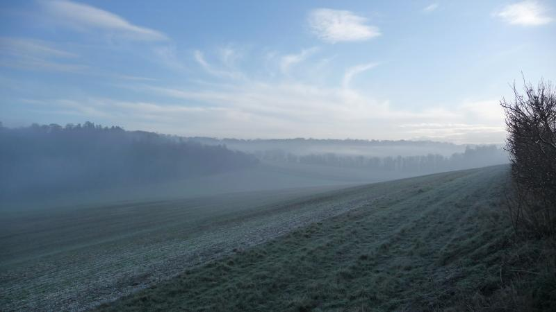 Country walks on a crisp winter morning in the sun.
