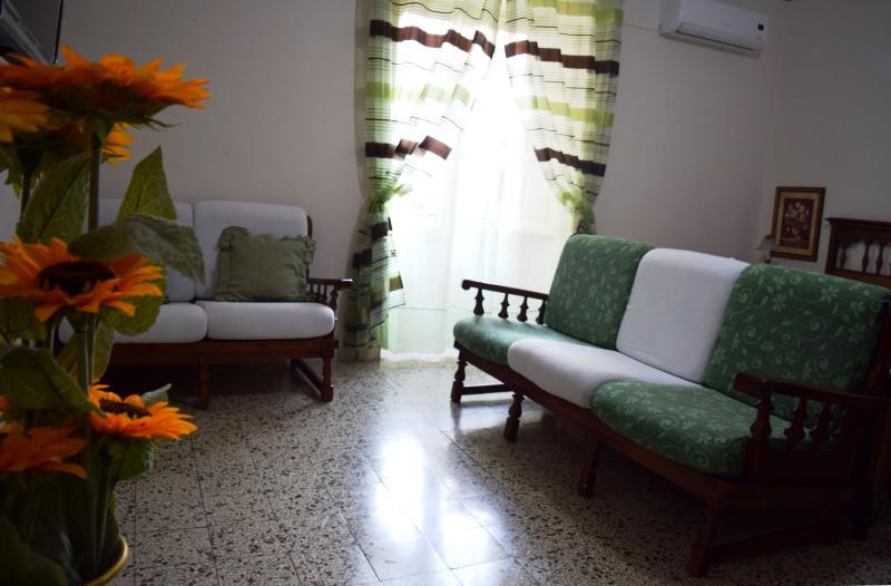 Salotto composto da divano 3 posti e divano 2 posti.