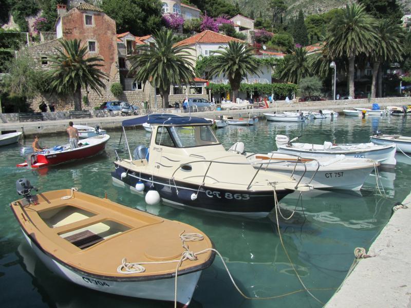 Rent a boat from Mlini port (cafe bar Hogar 200m from Casa Milolaza)