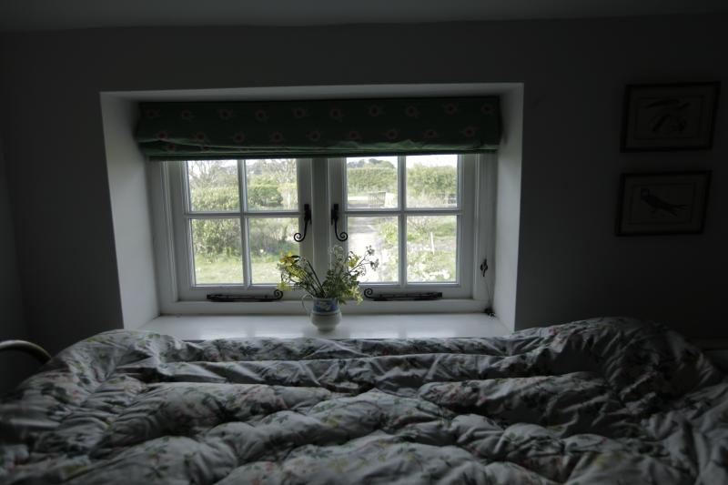 View from single bedroom