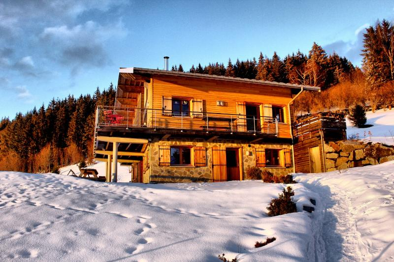 Amazing apt with mountain view, vacation rental in Gerardmer