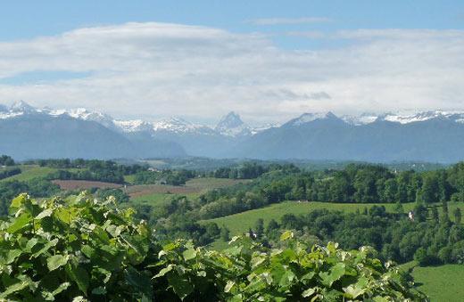 Magníficas vistas de los Pirineos y los viñedos locales.