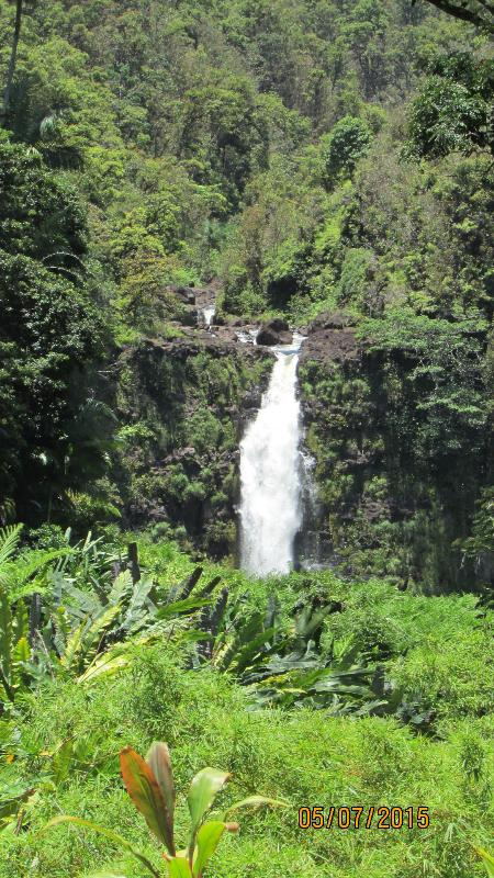 Enjoy Akaka Falls, just a short drive from the suite.