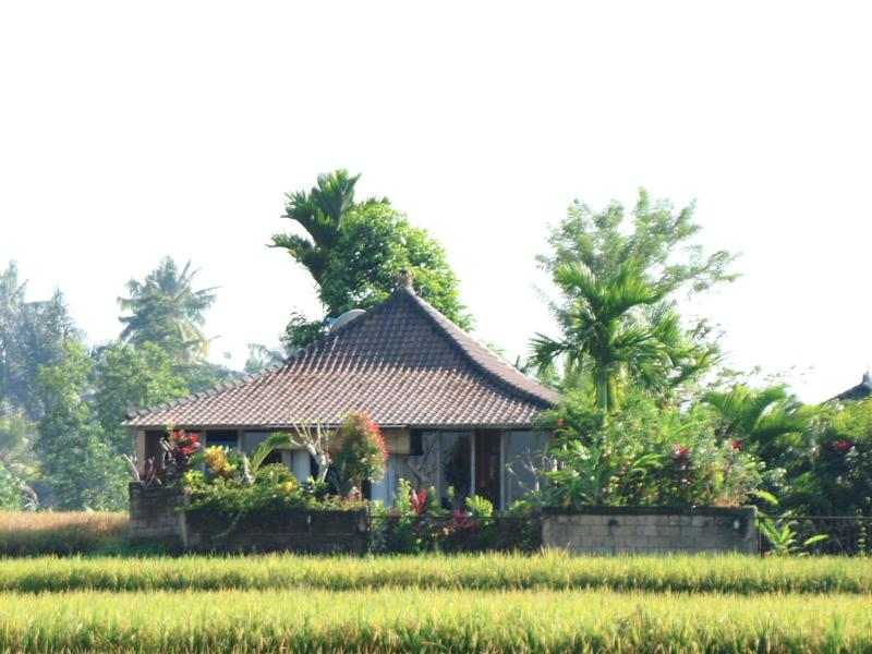 Jepun Villa viewed from the rice field