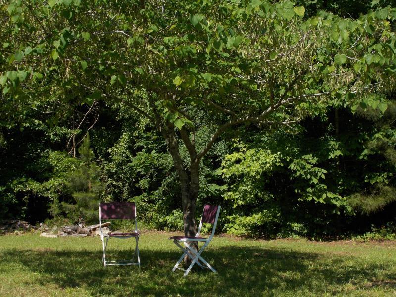 Ha en trevlig picknick