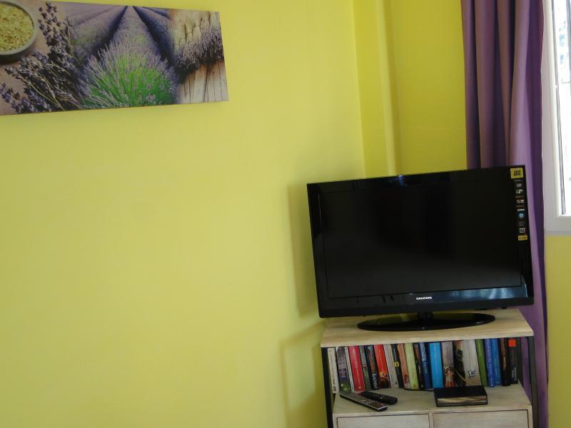 SAT TV in the apartment house Lavanda