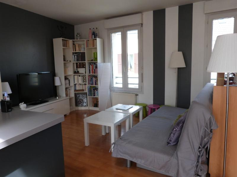 Big flat - 3 bedrooms for 6 guests, terrace, vacation rental in Le Bourget