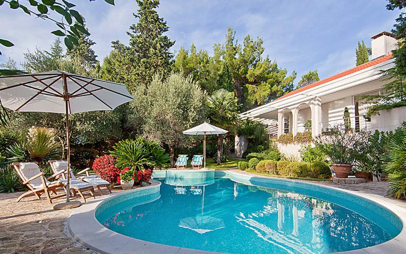 Spacious villa with swimming-pool, holiday rental in Milcetici