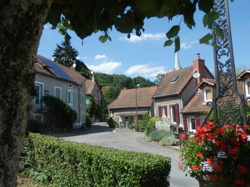 leplessis, holiday rental in Marmagne