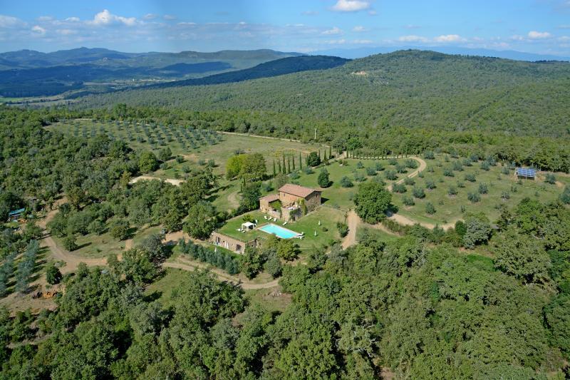 agriturismo campovecchio - Appartamento Ulivo, vacation rental in Castelnuovo Berardenga