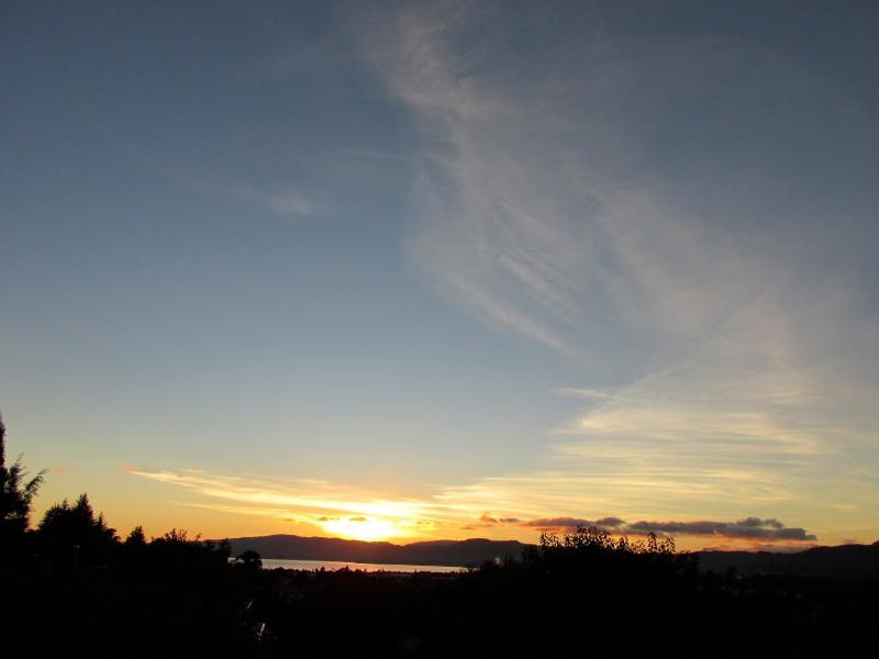 View (sunrise on Lake Rotorua)