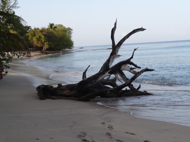 Fotomotiv bei Heywood Beach