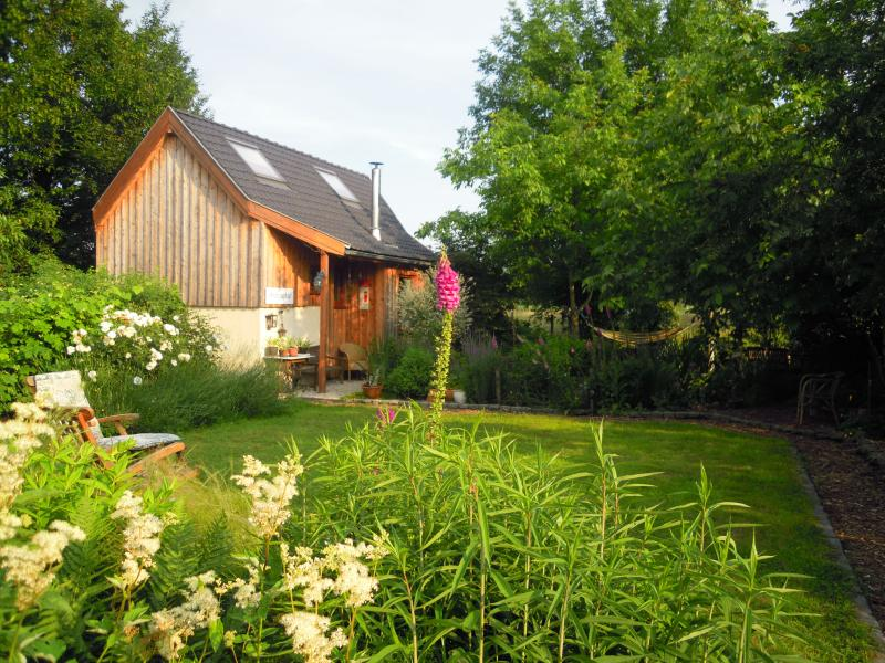 cottage in the spring sunshine, with common grass square
