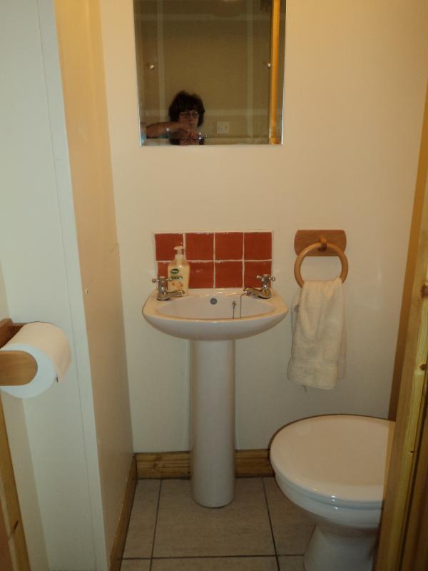 Ground floor toilet- A welcome retreat!