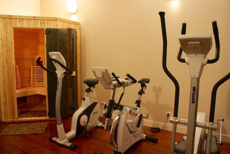 The upstairs fitness room equipped with professional equipment.