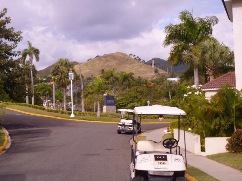 Enjoy Your Golf Cart - Villa Rentals Only