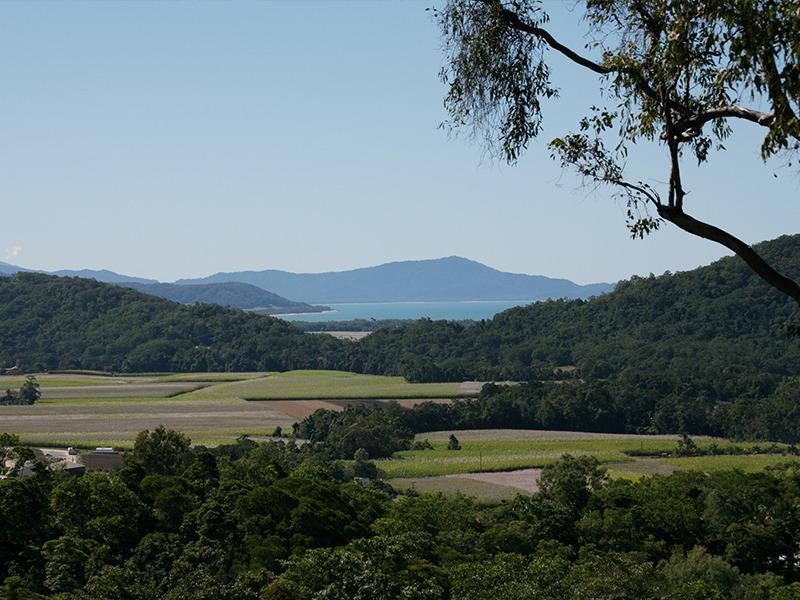 Views from Mai Tai