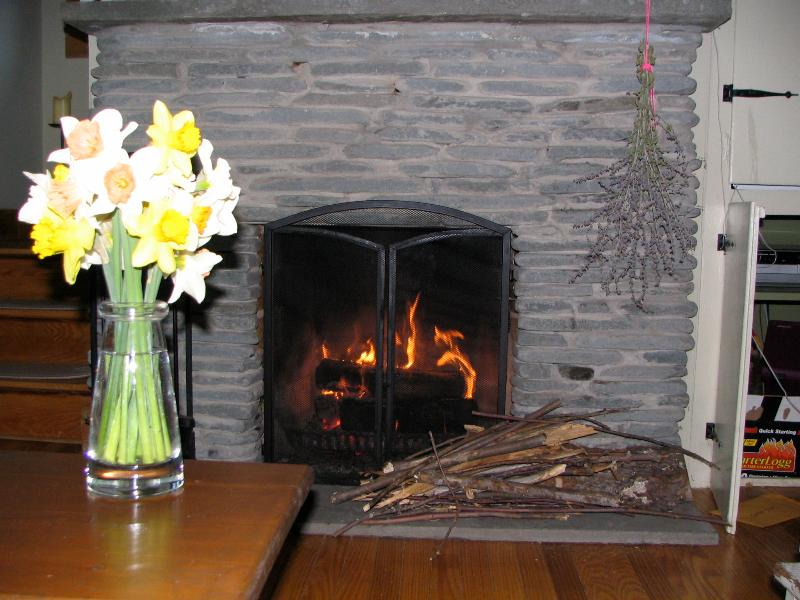 The fireplace is so cozy - and romantic - all year long!