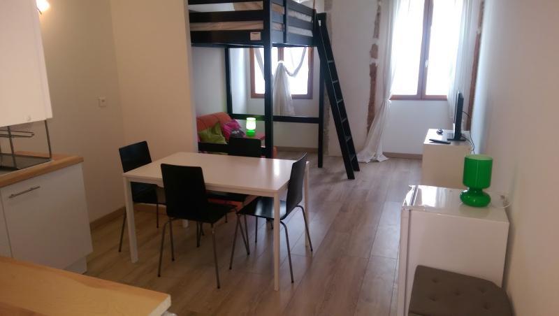 Studio meublé Lyon 3 pour 4 personnes, vacation rental in Rhone