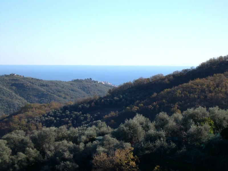 Panoramic views over the Prino to the sea