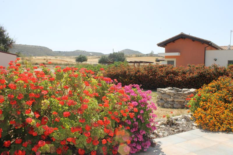Flowers in abundance bringing much colour to the villa