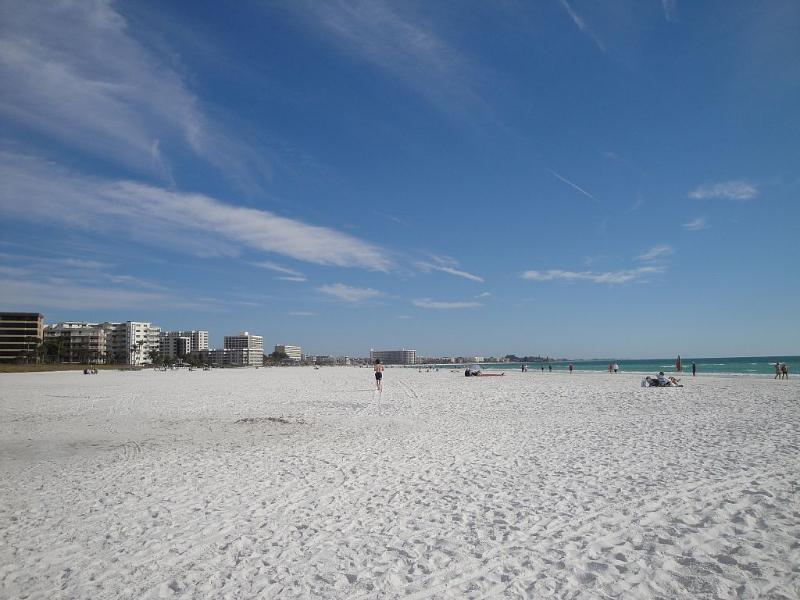 Siesta Key #1 Beach in USA!