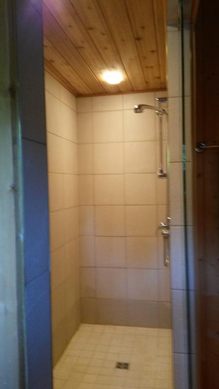 Paseo en la ducha en el baño en el dormitorio principal