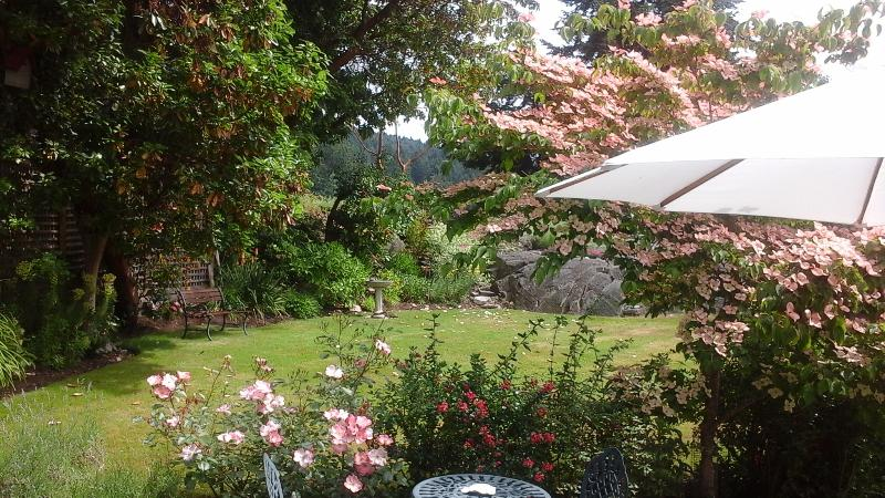 Garden view,Humming bird central, 50 meters from the beach!