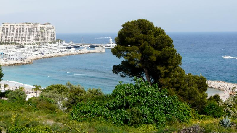 Panoramic sea Monaco view