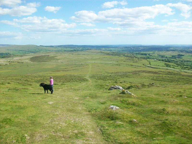 Miles of moorland to explore