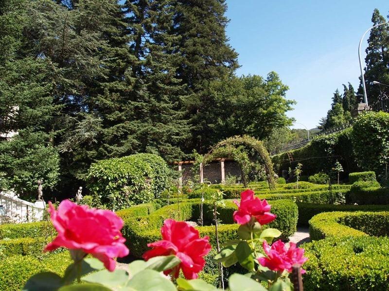 Jardín a mediodía. (Algunas fotos del jardín son anteriores a las últimas mejoras que hemos hecho.