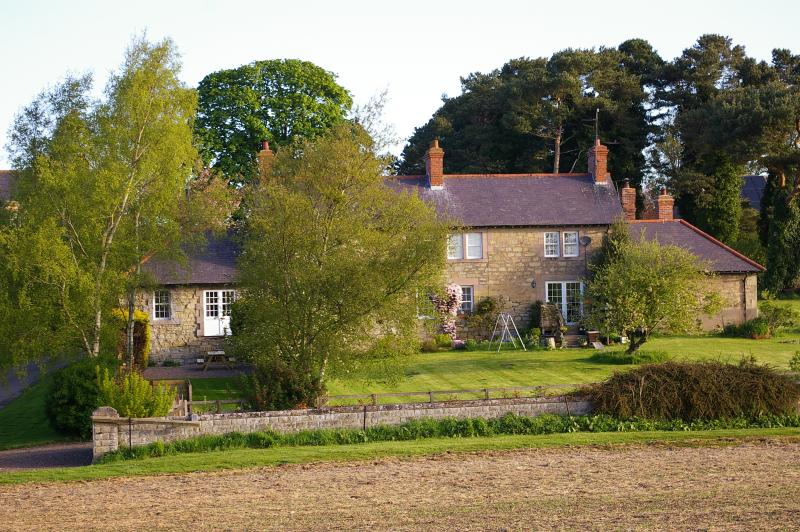 Our little row of four cottages.