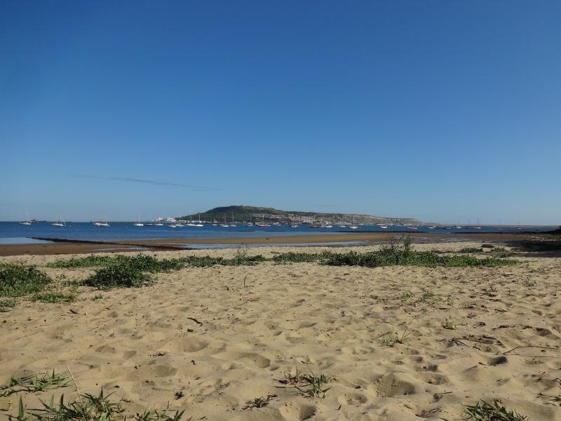 Plenty of sand for sandcastles in Castle Cove
