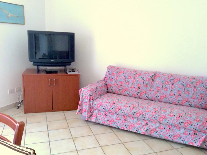 Living room with sofa bed and TV