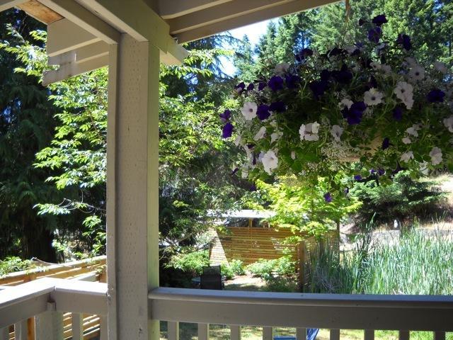 Vista desde el porche mirando a la izquierda