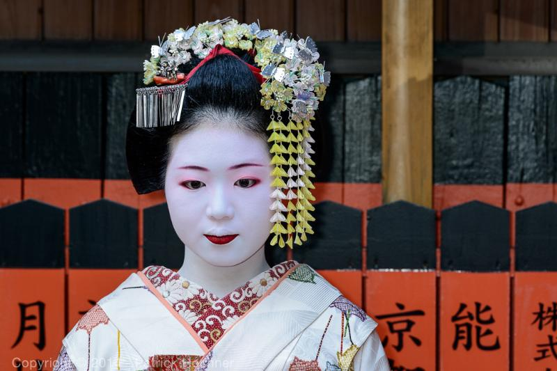 A Maiko at a tea ceremony -- discover the Japanese tradition