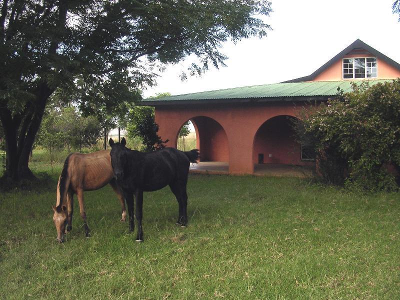Marmalade Cottage, holiday rental in Drakensberg Region