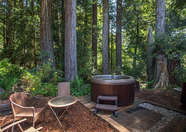 Soak in the hot tub while soaking  up  Redwood views!