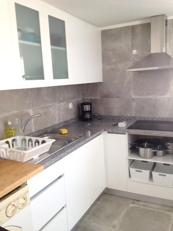 Fully equipped kitchen including spices, cereals and detergents
