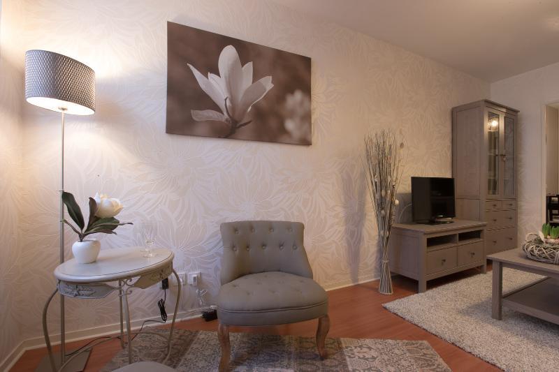 CHOUETTE APPARTEMENT t2 41m2 au coeur de Dijon, vacation rental in Dijon