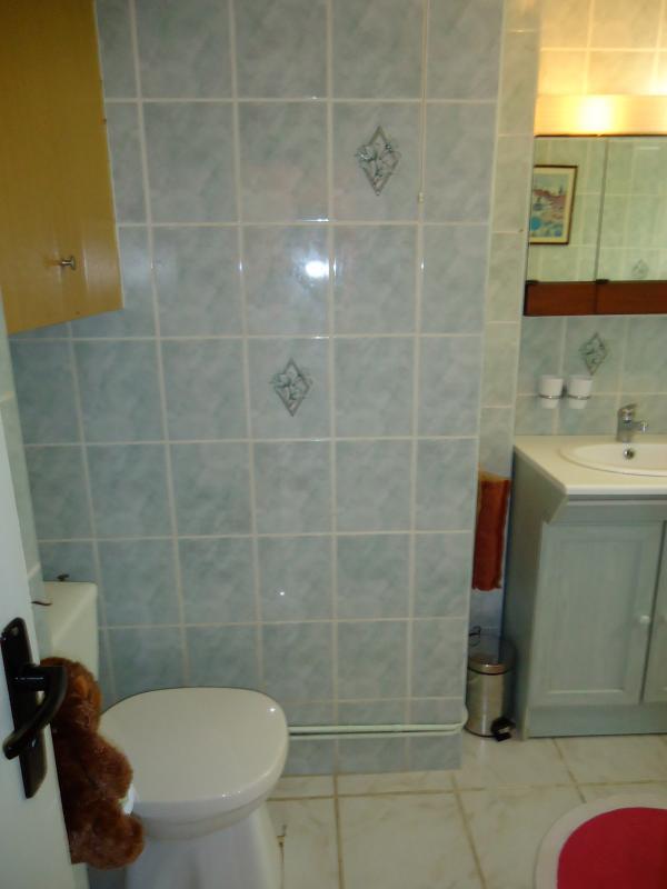 Salle de bain avec cabine de douche, lavabo, wc et machine à laver