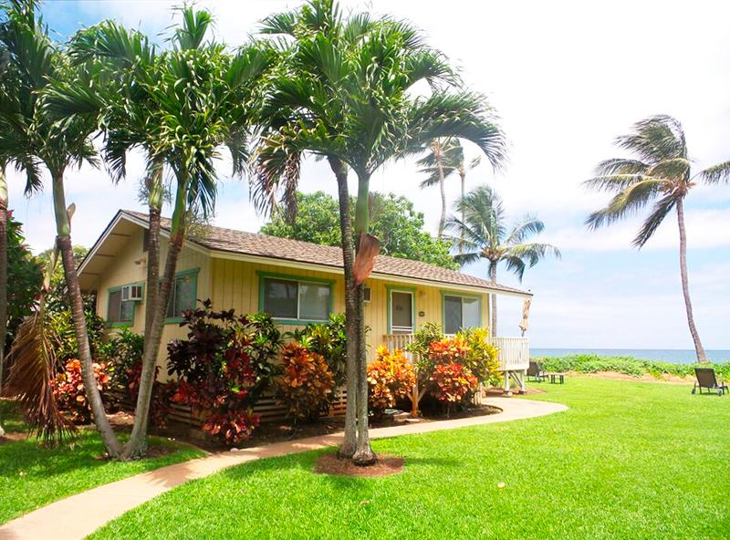 Palm Cottage, holiday rental in Paia
