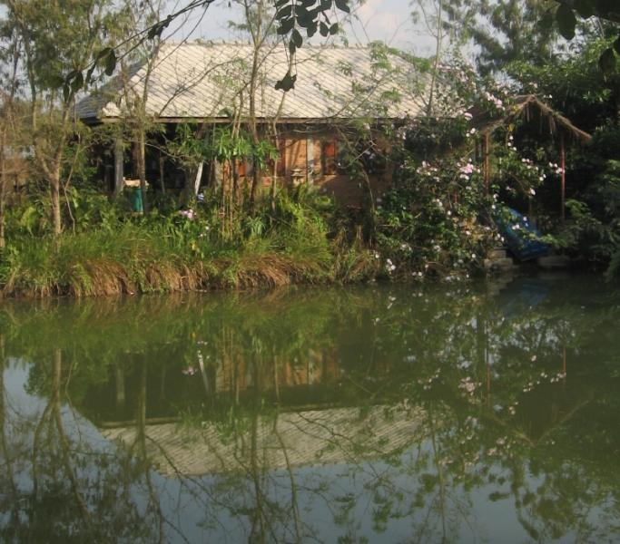 Lychee Lodge, view from pond