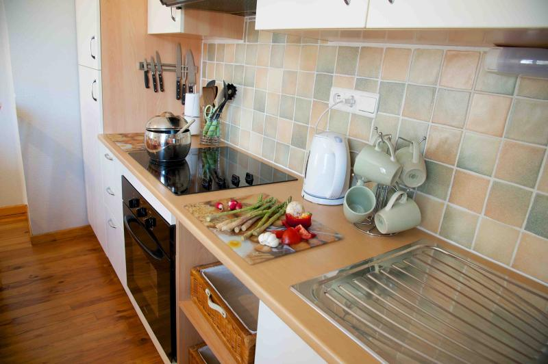 Well equipped kitchen, large fridge freezer
